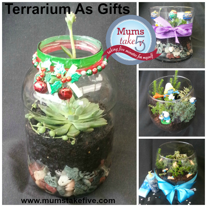 terrarium homemade how to