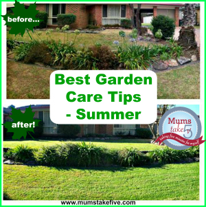 Top Tips for Summer Garden Care