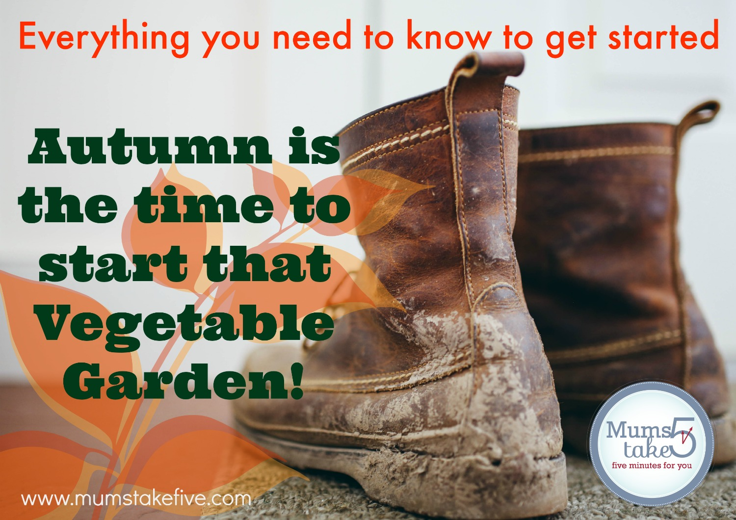 Autumn Vegetable Garden Planting