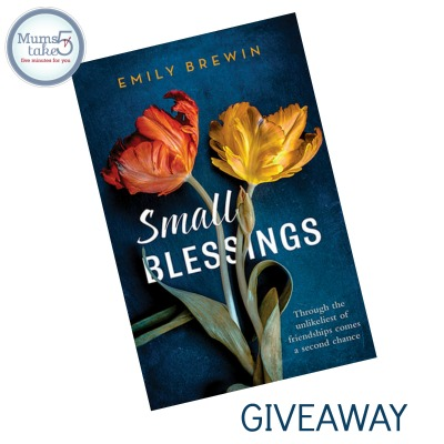 Small Blessings by Emily Brewin