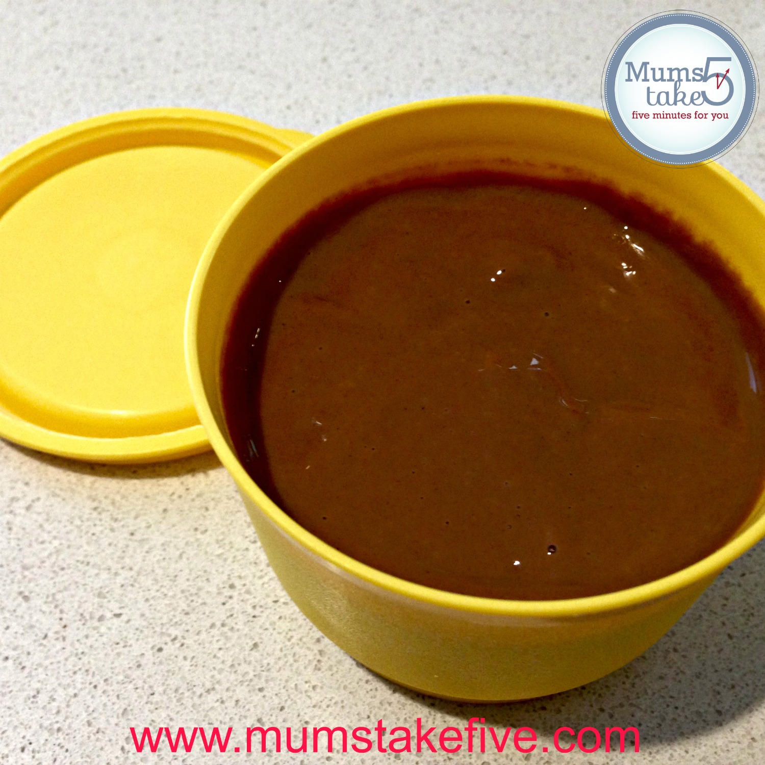 THermomix Chocolate Custard Recipe