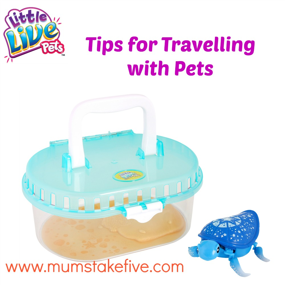 tips for travelling with pets
